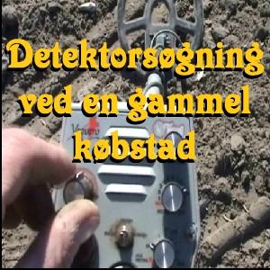 Detektorsøgning